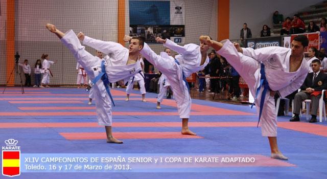 Campeonato de España de Karate Senior 2013
